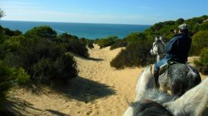 Camino de la playa de Matalascañas