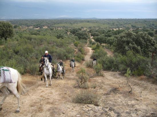 Cordeles y Cañadas, vía pecuarias por excelencia